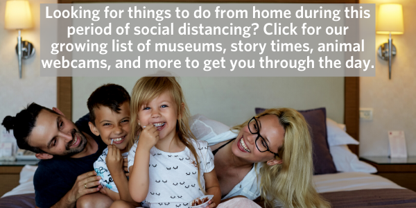 enews things to do from home1